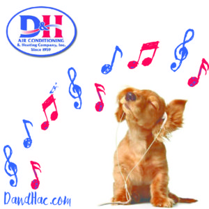 D&H jingle graphics