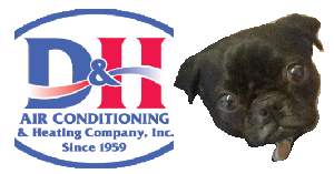 D&H AC supports the Humane Society of Southern Arizona2