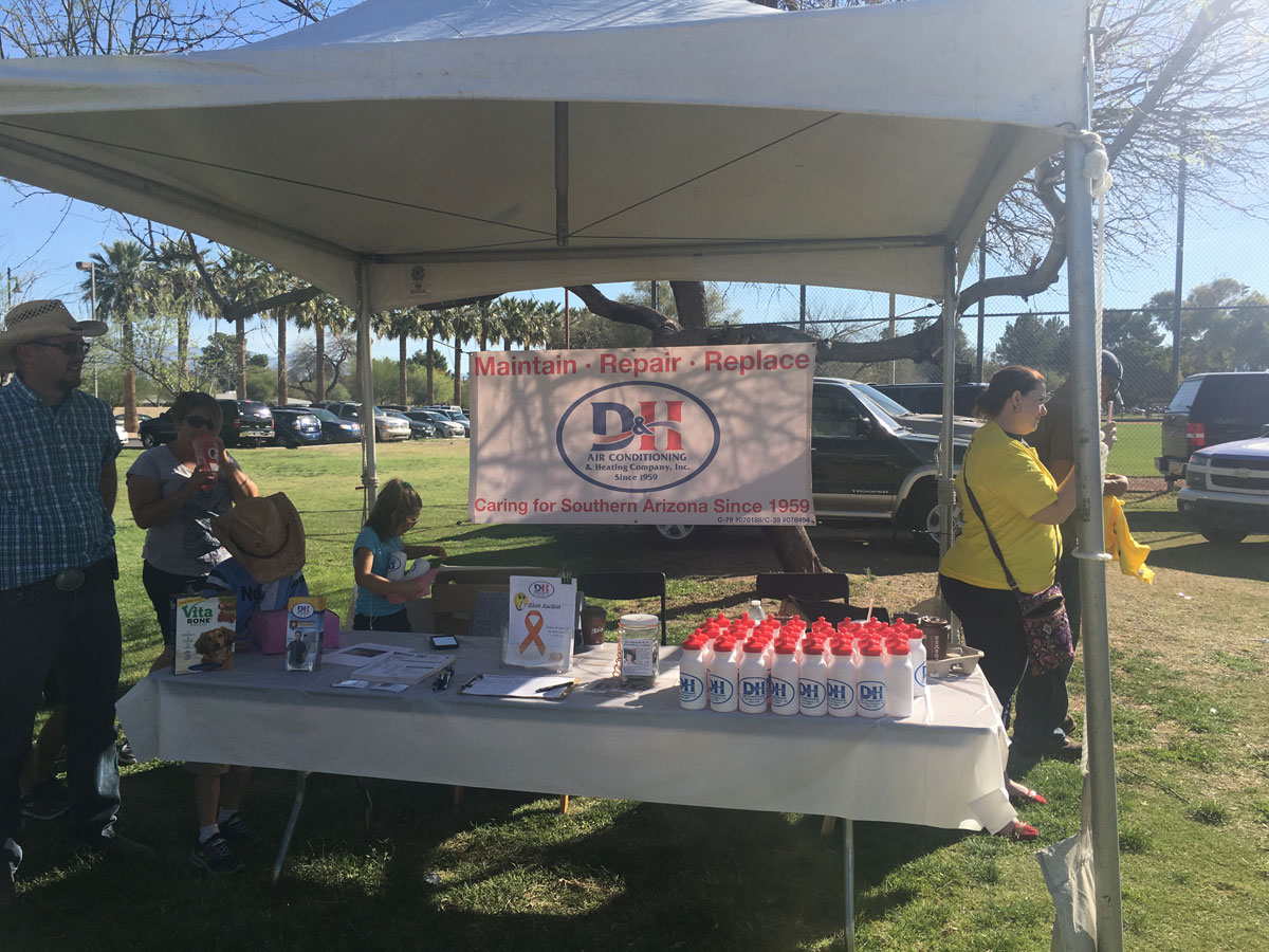 D&H supports supports Walk for MS 2017e