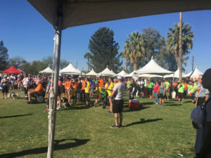 D&H AC supports tucson walk for MS 2017