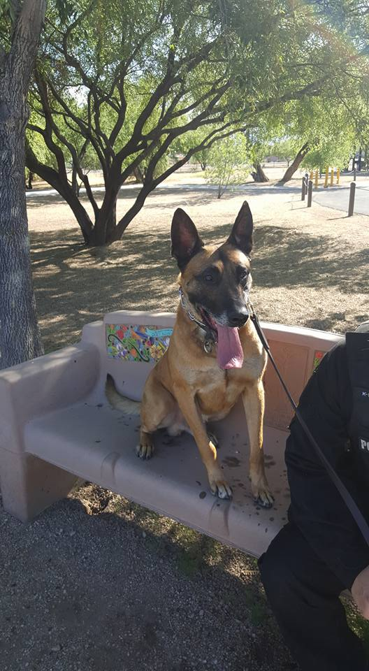 D&H AC with the Tucson police K9 walk 2016c
